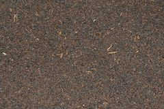 Dried black tea leaves - texture photo Stock Photography