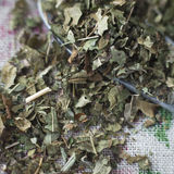 Dried blackberry leaves Stock Image