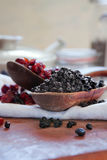 Dried blueberries & cranberries Stock Photography