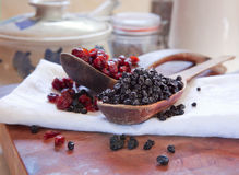 Dried blueberries & cranberries Royalty Free Stock Images