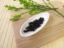 Dried blueberries, Myrtilli fructus. In herbalism Royalty Free Stock Image