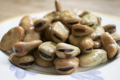 Dried board beans Stock Image