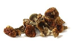 Dried Boletus Mushrooms Royalty Free Stock Images