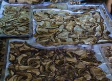 Dried boletus mushrooms for sale on the market. stock image