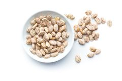 Dried borlotti beans. Stock Photos