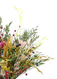 Dried bouquet. Bunch of flowers. Clipping path included Royalty Free Stock Photography