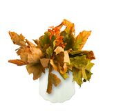 Dried bouquet of autumn leaves in a vase Royalty Free Stock Image