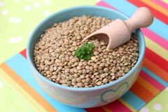 Dried browhn lentils. Some dried brown lentils in a blue bowl Royalty Free Stock Images