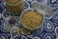 Dried brown lentils. Some dried brown lentils in a bowl royalty free stock photo