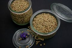 Dried brown lentils. Some dried brown lentils in a bowl Stock Image