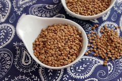 Dried brown lentils. Some dried brown lentils in a bowl royalty free stock image
