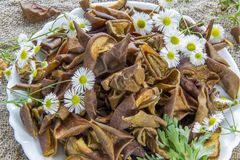 Dried brown pear slices white plate with white flowers. White daisy flowers and a green wormwood branch. Useful dry food. Edible s Royalty Free Stock Images