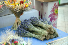 Dried bunches of lavender Royalty Free Stock Images