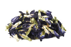 Dried butterfly pea flower Stock Photos
