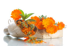 Free Dried Calendula Stock Photo - 56889860