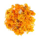 Dried calendula flowers isolated on white background. Medicinal herbs. Top view. royalty free stock image