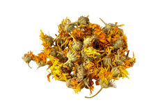 Dried calendula flowers for useful herbal tea on white backgroun Royalty Free Stock Photography
