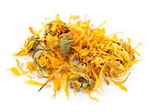 Dried calendula herb flowers stock images