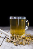 Dried Camomile Stock Images