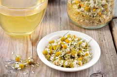 Dried camomile flowers on saucer. Royalty Free Stock Images