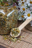 Dried Camomile Stock Photography