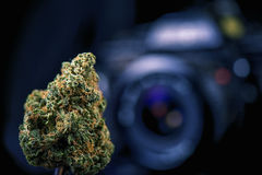 Dried cannabis bud in front of digital camera lens - marijuana p Royalty Free Stock Images