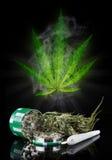 Dried cannabis plant, marijuana Royalty Free Stock Photo