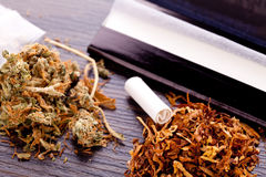 Dried Cannabis on Rolling Paper with Filter. Close up Dried Cannabis Leaves on a Resealable Cellophane Wrapper and a Rolling Paper with Filter on Top of the Royalty Free Stock Images