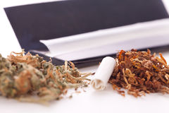 Dried Cannabis on Rolling Paper with Filter Royalty Free Stock Images