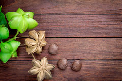 Dried capsule seeds fruit of sacha-Inchi peanut. On wooden table stock photo