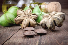 Dried capsule seeds fruit of sacha-Inchi peanut. On wooden table royalty free stock photos