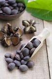 Dried capsule seeds fruit of Sacha Inchi peanut Stock Photo