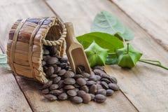dried capsule seeds fruit of Sacha Inchi peanut Stock Photos