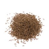 Dried caraway Stock Image