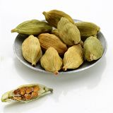 Dried cardamom pods and seeds, paths royalty free stock image