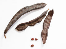 Dried carob pods Stock Images
