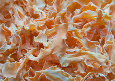 Dried carrot texture Royalty Free Stock Image