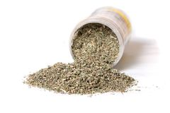 Dried catnip for cats Royalty Free Stock Image