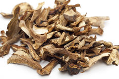 Dried Cepe mashrooms Stock Photography