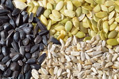 Dried cereal seeds and fruits Royalty Free Stock Photography