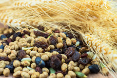 Dried cereal seeds and fruits with stalks of wheat ears Stock Photography