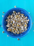 Dried chamomile Royalty Free Stock Photos