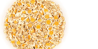 Dried Chamomile Flowers. Heap of dried chamomile flowers. Medicinal herb, Matricaria Chamomilla. With blank space at right to write a text Stock Image