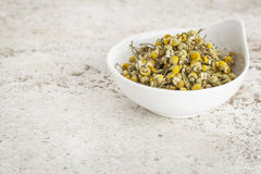 Dried chamomile flowers Stock Photo
