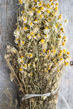 Dried chamomile or Matricaria chamomilla on wood Stock Photography