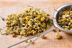 Dried chamomile with metal filter Stock Photos