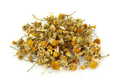 Dried chamomile tea. Isolated on white background Stock Images