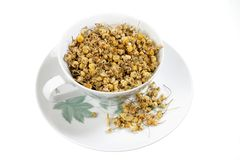 Dried Chamomile Tea in Cup Stock Photography