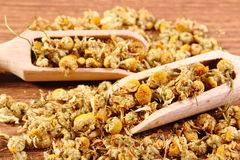 Dried chamomile on wooden table, alternative medicine Stock Photo