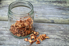 Dried Chanterelle mushrooms in glass jar Royalty Free Stock Photo